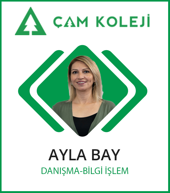 Ayla Bay